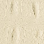 LL CROCO Creme Nr. 13465 2612x1000x3,5 mm
